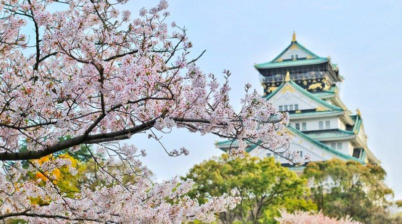 15 интересных фактов о Японии
