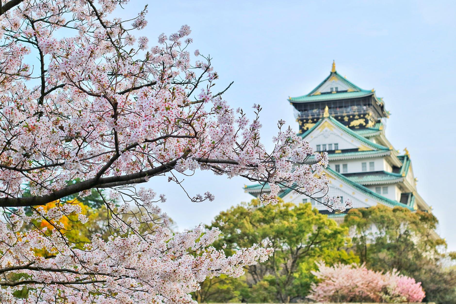 15 цікавих фактів про Японію.