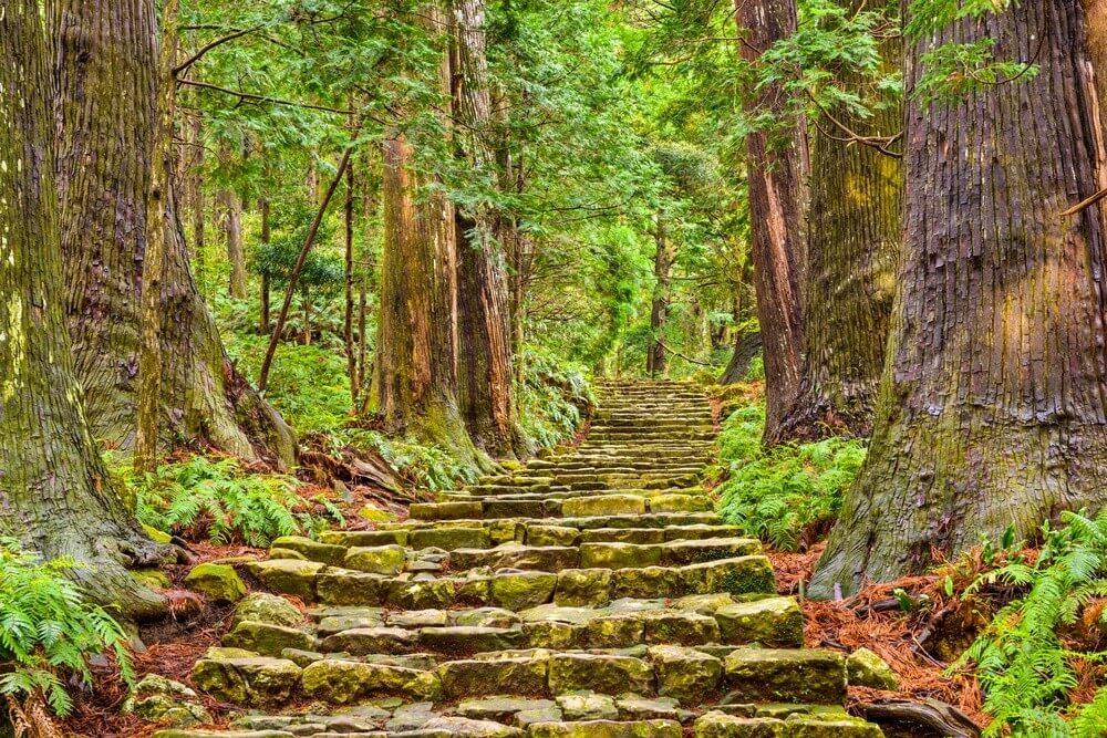 Поход по древним дорогам Японии