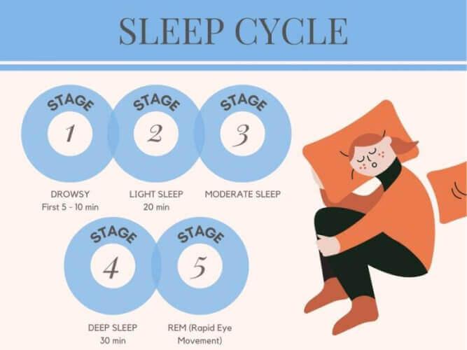 цикли сну